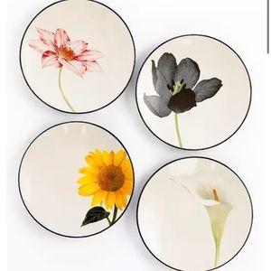 Noritake Colorwave Floral Appetizer Plates Set (4)